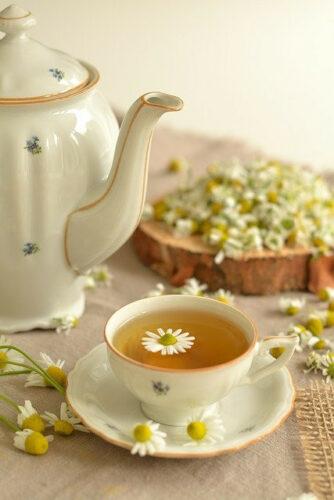 tea kettle, chamomile tea flower and chamomile tea in a tea cup