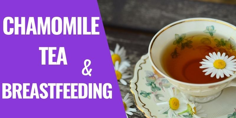 Is It Safe to Drink Chamomile Tea while Breastfeeding?